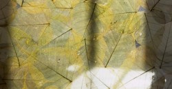 mumble-mumble-resina-trasparente-foglie